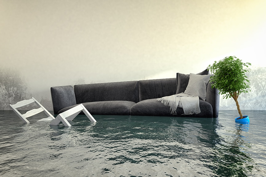 A couch, two chairs and a plant are floating in flood conditions.
